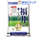 平成30年度産 おくさま印 福井県産コシヒカリ(5kg)【おくさま印】