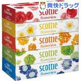Scottle T舒尔花木盆【优惠】(320张(件)(160组)*5个入)【Scottle(SCOTTIE)】[スコッティ ティシュー フラワーボックス 【お得】(320枚(160組)*5コ入)【スコッティ(SCOTTIE)】]