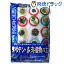 プロトリーフ サボテン・多肉植物の土(5L)