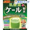 山本漢方 乳酸菌プラスケール粉末(4g*30包)