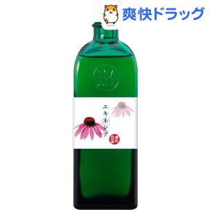 ホメオパシー ジャパン マザーチンクチャー エキネシア オリジナルマザーチンクチャー