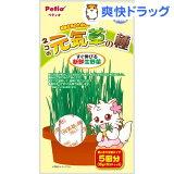 ペティオ ネコの元気草の種(15g*5包入)【HLSDU】 /【ペティオ(Petio)】[猫草]