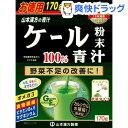 山本漢方 ケール粉末100%(170g)【山本漢方 青汁】