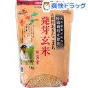 大潟村あきたこまち 発芽玄米 無洗米(1kg)[発芽玄米 無洗米]