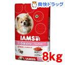 アイムス ドッグ 成犬用 ラム&ライス(8kg)【IAMS1120_lamb03】【アイムス】[アイムス 犬]【送料無料】