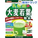 山本漢方 乳酸菌 プラス 大麦若葉 粉末(4g×15パック)【山本漢方 青汁】