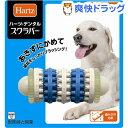 ハーツデンタル スクラバー中〜大型犬用(1コ入)【Hartz(ハーツ)】[犬 おもちゃ]
