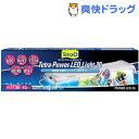 テトラ パワーLEDライト30(1コ入)【Tetra(テトラ)】