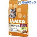 アイムス 成猫用 インドアキャット チキン(5kg)【アイムス】[【iamsc71609】]【送料無料】