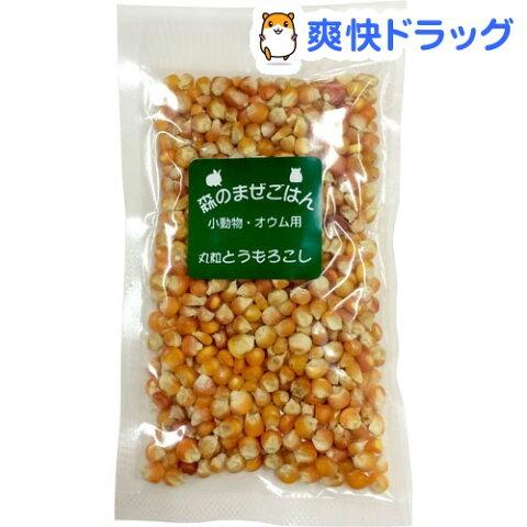 ペットプロ 森のまぜごはん 丸粒トウモロコシ(120g)【180105_soukai】【180119_soukai】【ペットプロ(PetPro)】
