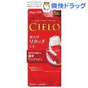 シエロ ヘアカラー EX クリーム 5RU 深いルビーブラウン(1セット)【シエロ(CIELO)】
