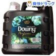 メキシコダウニー ナチュラルビューティー(8.5L)【ダウニー(Downy)】