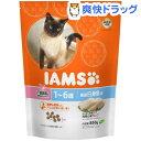アイムス キャット 1-6歳用 厳選白身魚味(850g)【IAMS1120_fish01】【アイムス】[アイムス 猫]