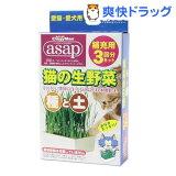 キャティーマン 猫の生野菜 種と土(3回分)【キャティーマン】[猫草]