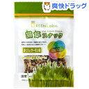 グリーンラボ 猫草スナック まぐろとサーモン(40g)[猫草]