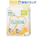 電球形蛍光灯 エコデンキュウ A形 E26 60形相当 電球色 06-0259(2コ入)