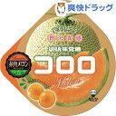 コロロ 赤肉メロン(40g)