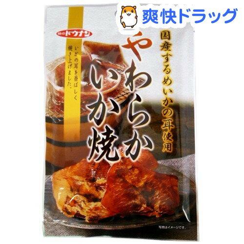 【訳あり】味のドウナン やわらかいか焼(46g)