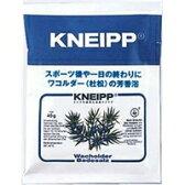 【ネコポス対応可】クナイプジャパン KNEIPP クナイプバスソルト ワコルダーの香り 40g