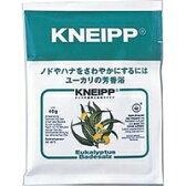 【ネコポス対応可】クナイプジャパン KNEIPP クナイプバスソルト ユーカリの香り 40g