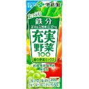 伊藤園 充実野菜 緑の野菜ミックス 紙パック 200ml * 24本