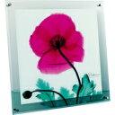 ユーパワー アートフレーム XRAYガラスアート ポピーマルサーラ(Mサイズ) XR-05007