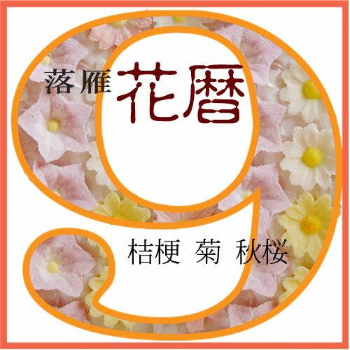 落雁 9月の花 桔梗、菊、秋桜...:sousaku-you:10000117