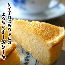 【お中元 ギフト 早割】チーズケーキ グルメ大賞2年連続受賞...