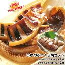 【母の日ギフト】イカ焼き【いかのふっくら焼1袋】珍味【イカわたルイベ漬50g×2袋】日本海の国産いか。酒の肴(つまみ…