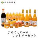 【N】 まるごとみかんファミリーセット みかんジュース 100% ゼリー ポン酢 スムージー 送料無料 早和果樹園