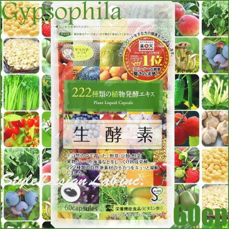 Gypsophila Fresh Enzyme 60cp/30days≪Compound Plant Fermentation Product/Rice Black Vinegar Concentrated Powder Containing Food≫『4562273161797』