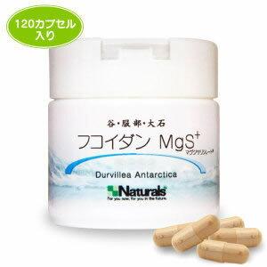 Valley, Oishi, Hattori fucoidan MgS + (120 capsules)