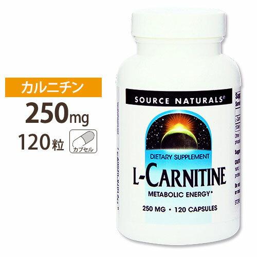 カルニチンサプリメントL-カルニチン250mg120粒/サプリメント/サプリ/ダイエットサプリ/カル