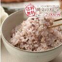 【メール便送料無料】武富勝彦さんの古代米雑穀ブレンド「縄文の米 十三穀」250g×2個