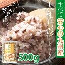 すべて国産(九州産)・古代米・雑穀米ブレンド「大和乃彩(やまとのいろどり)500g」