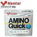 健康体力研究所 アミノクイック 450g K5107 (健体/Kentai/ケンタイ)