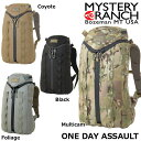 MYSTERY RANCH ミステリーランチ ONE DAY ASSAULT PACK 1DAY ワンデイアサルトパック バックパック デイパック リュック