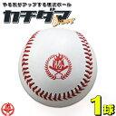 あなたの「夢」を応援する硬式練習球「カチダマ」です!野球 硬式ボール 練習球 1球 硬式野球 ボール b004-1k