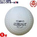 ナガセケンコー ソフトボール ボール 1号 ゴムボール 小学生用 試合球 1球 kenko-1