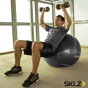 【オールスポーツ トレーニング用品 スキルズ】STABILITY BALL/スタビリティボール/65cm(026958)