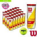 【テニス ボール ウィルソン】CHAMPIONSHIP EXTRA DUTY/チャンピオンシップ・エクストラ・デューティー『3球入×24缶』(WRT100101...