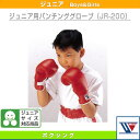 Win-jr-200-1