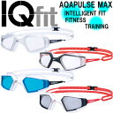 SPEEDO★AQUAPULSE MAX★IQfit 아시안 피트 노멀 고글★SD93G02*