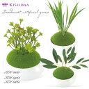 KISHIMA キシマ 和盆栽 消臭アーティフィシャルグリーン KH-61061 62 63 鉢タイプ CT触媒加工 造花