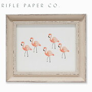 RIFLE PAPER CO. ライフルペーパー Flamingo S フラミンゴ Sアートプリント・ポスター Sサイズ ブランド デザイナーズ フレーム イン ポスター USA アメリカ APM050ギフト プレゼント