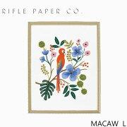 RIFLE PAPER CO. ライフルペーパー MACAW L マコーインコ・Lアートプリント・ポスター ブランド デザイナーズ フレーム イン ポスター USA アメリカ APM107-MACAW Lギフト プレゼント