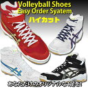 Asics /asics volleyball shoes [higher frequency elimination] easy order system [/NP deferred payment impossibility impossible of collect on delivery] [free shipping] [smtb-MS]