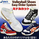 Asics /asics volleyball shoes [middle cut] easy order system [/NP deferred payment impossibility impossible of collect on delivery] [free shipping] [smtb-MS]