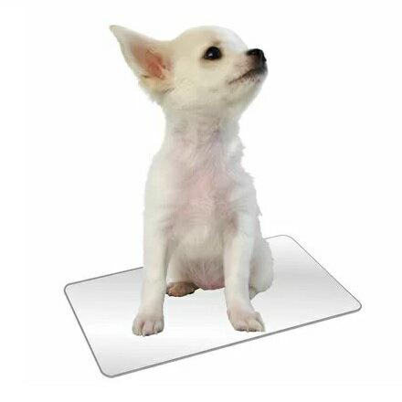 マルカンひんやりクールアルミプレートS暑さ対策夏用品犬・猫用超小型犬クールマット