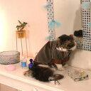 Simplers 着せやすい ベロアドレス M・L カーキグリーン 猫服